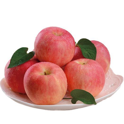 山西省運城市臨猗縣紅富士蘋果 山西運城臨猗紅富士新鮮水果野生一級冰糖心脆甜