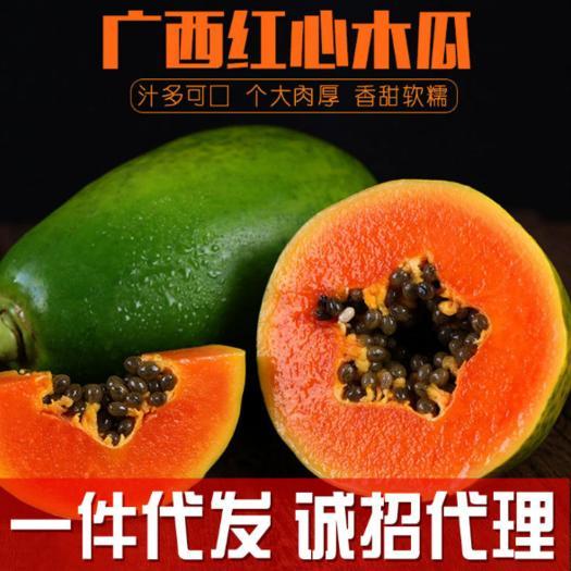 廣西壯族自治區南寧市上林縣 紅心木瓜熱帶新鮮水果冰糖紅心木瓜 9斤孕婦水果一件帶發