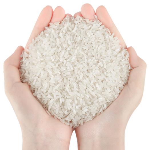 湖北省荊門市京山市 2019當季新米京山大米長粒米10斤秈米不拋光打臘