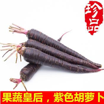 特色农产品新鲜现拔紫胡萝卜花青素紫色蔬菜抗氧化
