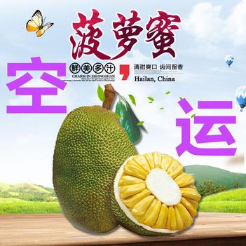 菠萝蜜16斤17斤18斤 海南特产三亚水果保亭现摘现发包邮