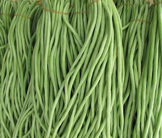 广西壮族自治区北海市铁山港区 农家直销40CM~70cm长豇豆