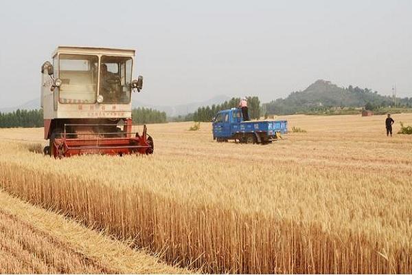 2020年还有农业直补吗?今年的农业直补有哪些新变化?