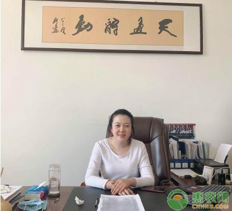 """惠农网苗木商家:线上种出""""摇钱树"""""""