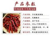 印度魔鬼椒 2~5cm 紅色 特辣