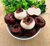 荸薺馬蹄新鮮桂林水果馬蹄脆甜多汁微商電商代發大果5斤裝包郵