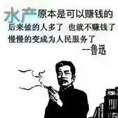 潛江小龍蝦 4-6錢 人工養殖