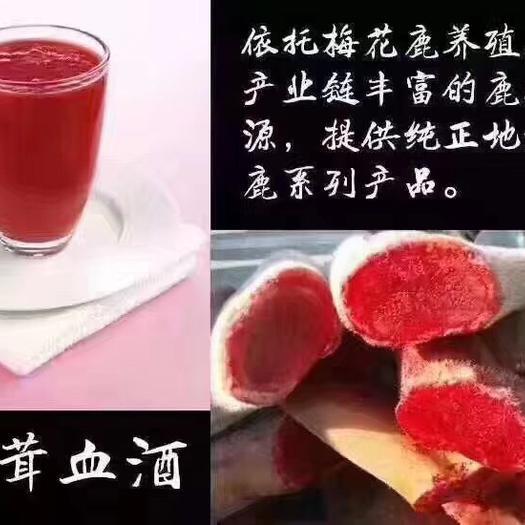吉林省長春市雙陽區雙陽鹿鄉梅花鹿