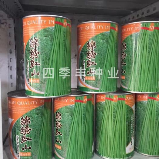 四川省成都市新都区长豇豆 80cm以上 不打冷