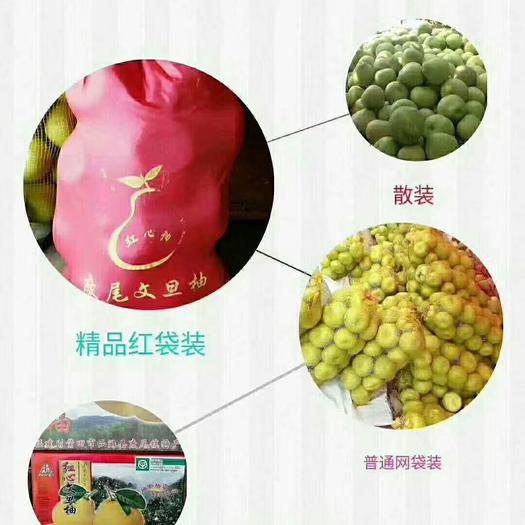 福建省莆田市仙游县文旦柚 1斤以上