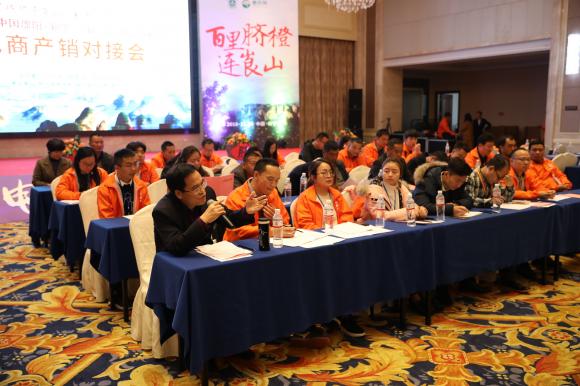 新宁县携惠农网举办产销对接会 线上销售6.5万件