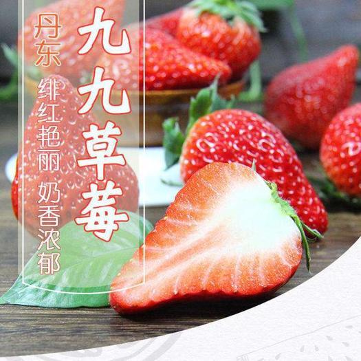 辽宁省丹东市振兴区 【顺丰包邮】丹东九九草莓 50克 全场省内外包邮