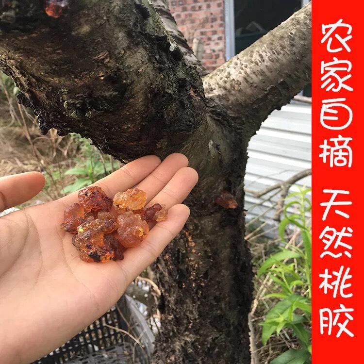 一級紅黃膠 桃膠 天然無硫