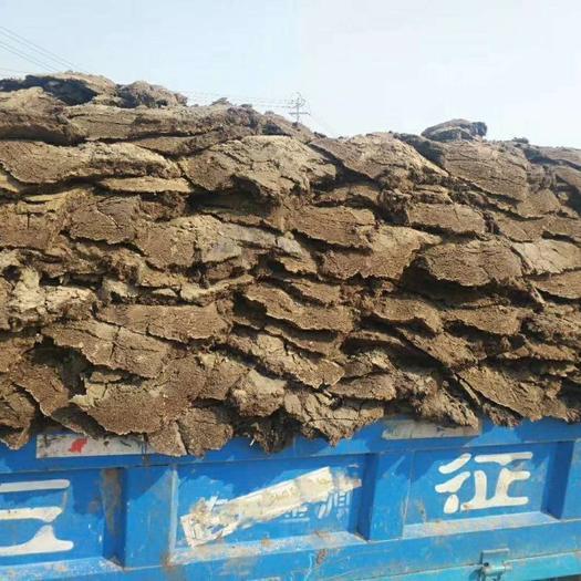 河北省邯郸市永年区 发酵纯羊粪-80斤/包-高温发酵腐熟-不烧苗不生虫!