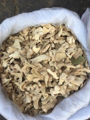 云南省曲靖市羅平縣低硫干姜片 6-12個月 散裝
