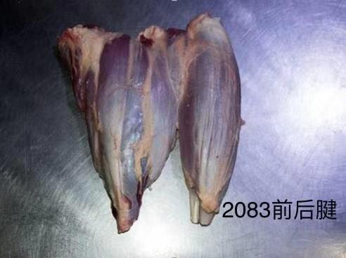 [牛肉类批发]牛肉类 生肉价格35元/斤