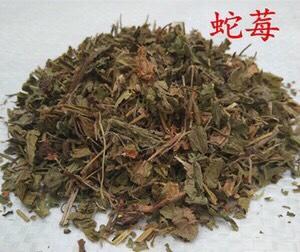 河北省保定市安国市蛇莓