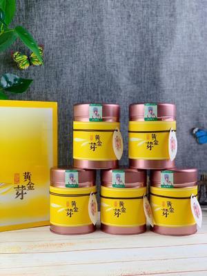 福建省泉州市安溪縣安吉黃金葉茶 特級 禮盒裝