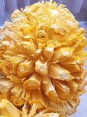 越南菠蘿蜜 10斤以下