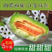 羊角蜜甜瓜 5斤裝一件代發微商批發價便宜