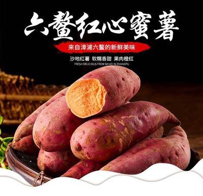 福建省漳州市平和縣六鰲地瓜 紅心蜜薯大果精品包裝包郵價格
