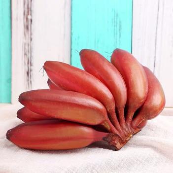 福建南靖土樓紅美人香蕉火龍蕉5斤包郵 8到10個 一件代發