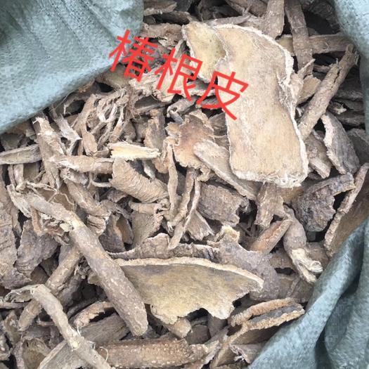 安徽省亳州市譙城區椿皮