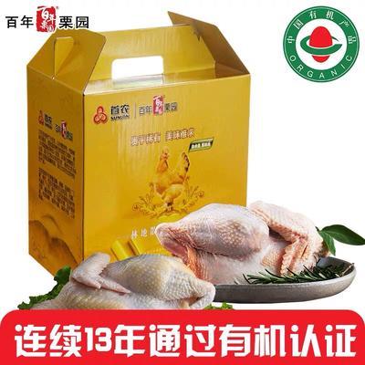 浙江省溫州市樂清市白條雞 新鮮