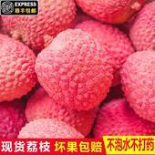 新鮮水果荔枝3斤裝果園現摘現發