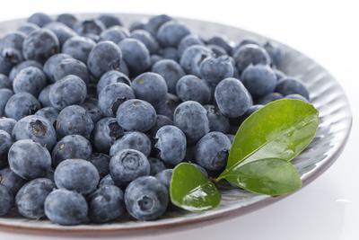 云南省麗江市華坪縣燦爛藍莓 10 - 12mm以上 鮮果