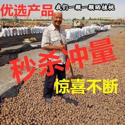 新疆維吾爾自治區阿克蘇地區烏什縣 紙皮核桃5斤裝補腦補鈣佳品批發小孩零食促銷