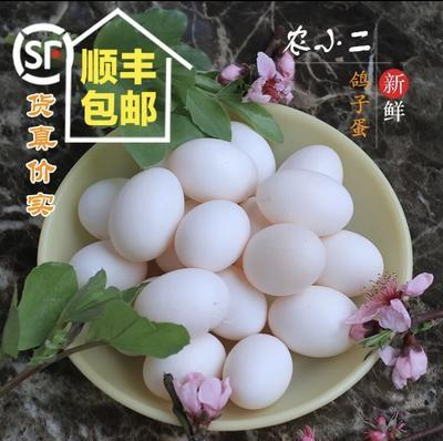湖南省岳陽市岳陽縣白鴿蛋 食用 禮盒裝