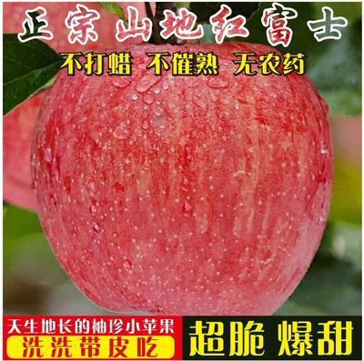 陜西省西安市長安區 洛川紅富士小蘋果新鮮冰糖心脆甜6顆18顆14.9元整箱包郵