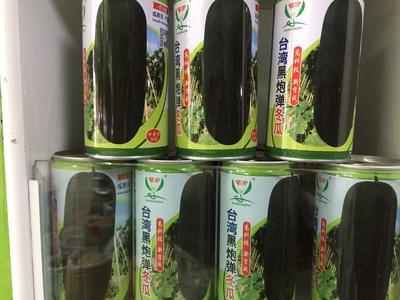 四川省成都市成華區 黑皮冬瓜種子,高產心小。