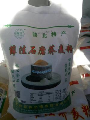 陜西省榆林市定邊縣 蕎麥面粉 5斤全國包郵