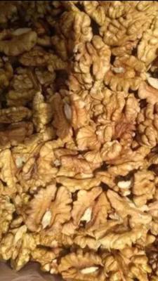 新疆維吾爾自治區吐魯番地區吐魯番市 新疆核桃仁,只限新疆地區供貨采購