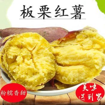 板栗紅薯 海南澄邁橋頭富硒地瓜  2/5/10斤裝 包郵