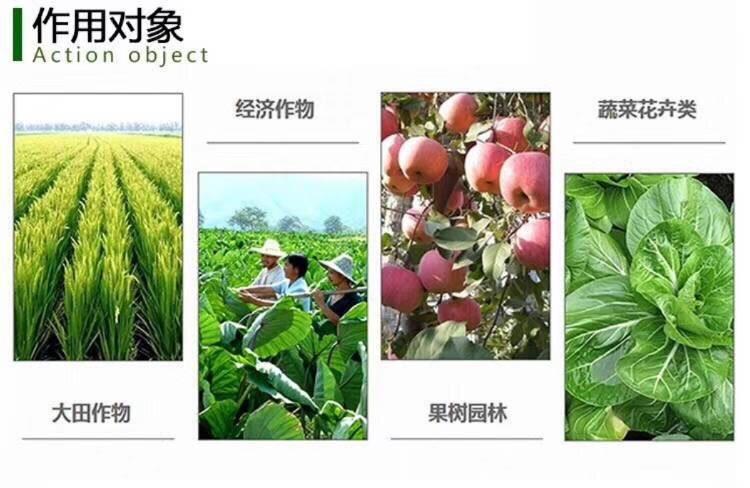 叶面肥料 芸苔素内脂,促进生长,提高产量