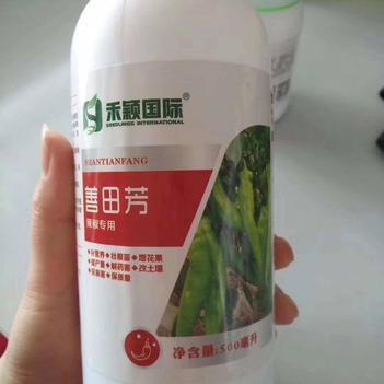 辣椒  專用葉面肥、240克 補營養/壯根苗增花果/