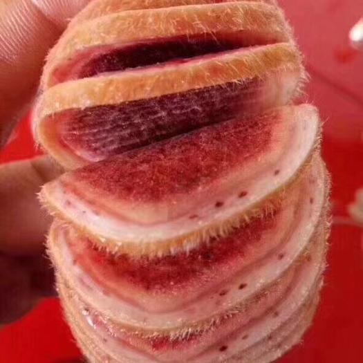 吉林省長春市雙陽區鹿角 鮮鹿茸片