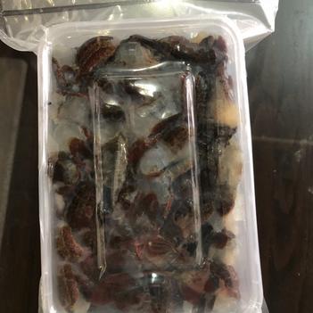 冻小龙虾 鲜活的虾尾真空打包好,全国发货。物流超方便,虾尾Q弹有劲道。