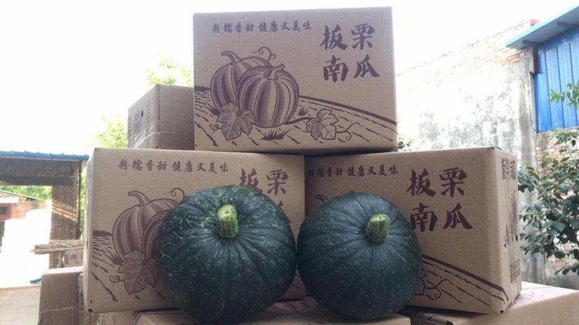板栗南瓜一件代發帶箱10斤裝18.5
