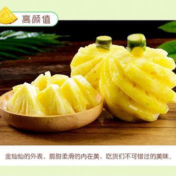 泰國小菠蘿 野生小菠蘿 香水小菠蘿 代加工