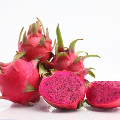 云南省紅河哈尼族彝族自治州蒙自市 云南金都一號火龍果,富含花青素,被稱為火龍果中最好吃的品種