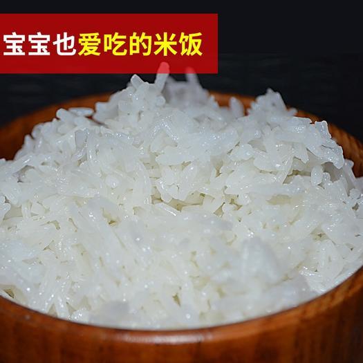 陕西省汉中市洋县 大山深处的生态香米,软糯可口不粘黏。