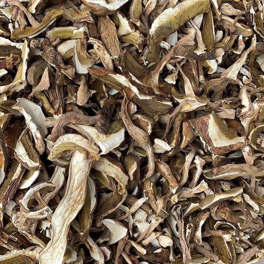 干牛肝菌牛肝菌竹美食蛏茶一煨栟图片