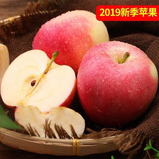 江蘇省蘇州市蘇州工業園區 應季嗄啦蘋果