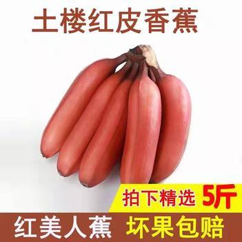 福建漳州红美人香蕉,无痕特级果+5斤包邮,坏果包赔