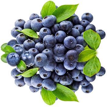 蓝莓 云南新鲜蓝莓 现摘现发 特价全场包邮