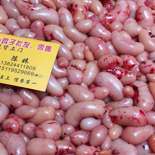 廣東省佛山市南海區 供應雞子,雞腰子,公雞蛋,雞春